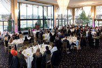 Mount Prospect Chamber of Commerce - Dynamic Year Luncheon 2018
